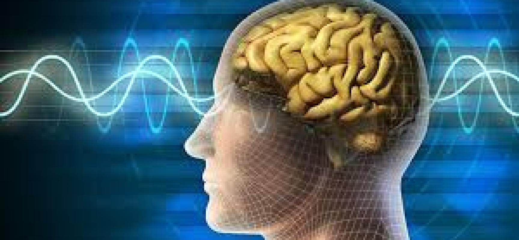 Mañana en radio: Ajedrez y neurociencia