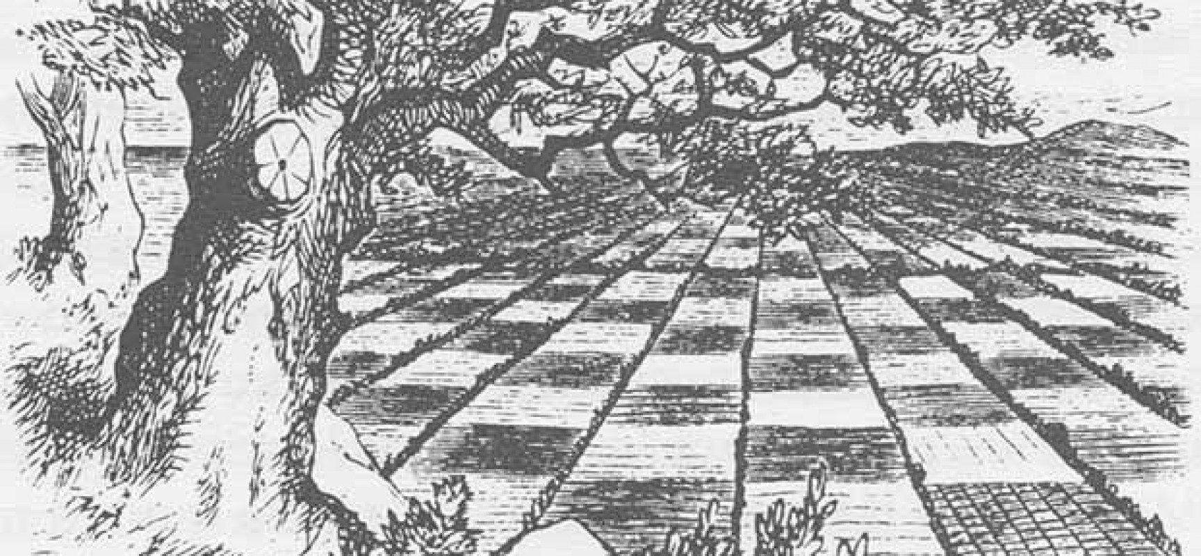 J. A. Garzón: «Creo que, siglo y medio después, demuestro cómo darle un sentido al enigma de ajedrez de Lewis Carroll»