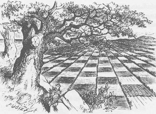 """J. A. Garzón: """"Creo que, siglo y medio después, demuestro cómo darle un sentido al enigma de ajedrez de Lewis Carroll"""""""