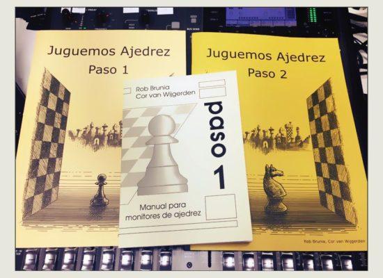 Rimme Rypkema (método Juguemos Ajedrez): «Los chicos aprenden mejor con tableros sin coordenadas»